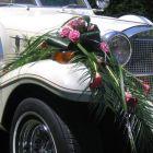 voiture-excalibur-décoration-avant.jpg