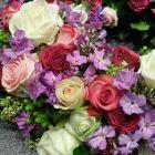 roses-et-fleurs-pastel